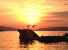 Jumping Croatia